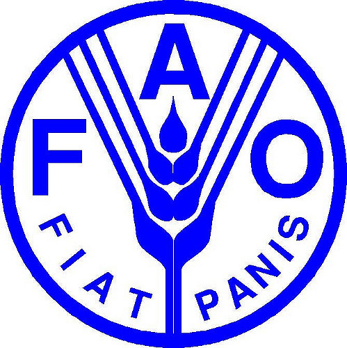 FAO intensifies campaign on Rinderpest reemergence in Nigeria