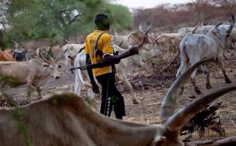 NEC bans open grazing in troubled states