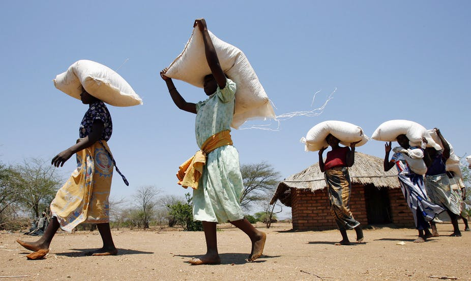 African countries' policies must shift to achieve zerohunger