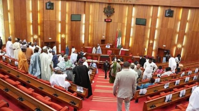 Senate rejects N15bn Budget of Trade and Investment Ministry