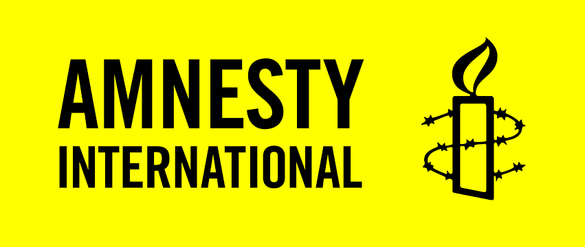 Stop playing the devil's advocate, group  warns Amnesty International over conspiracy to destabilize Nigeria