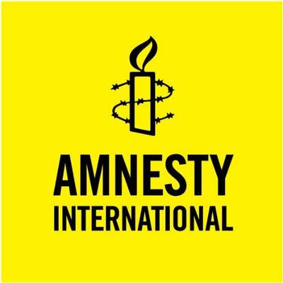 Boko Haram: Conor Fortune, Amnesty International behind new plots by terrorists' sponsors to blackmail Nigerian military- Human Rights Monitors